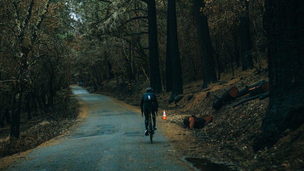 contacta-con-nosotros-mooquer-ropa-para-ciclismo-calcetines-de-ciclismo-altos